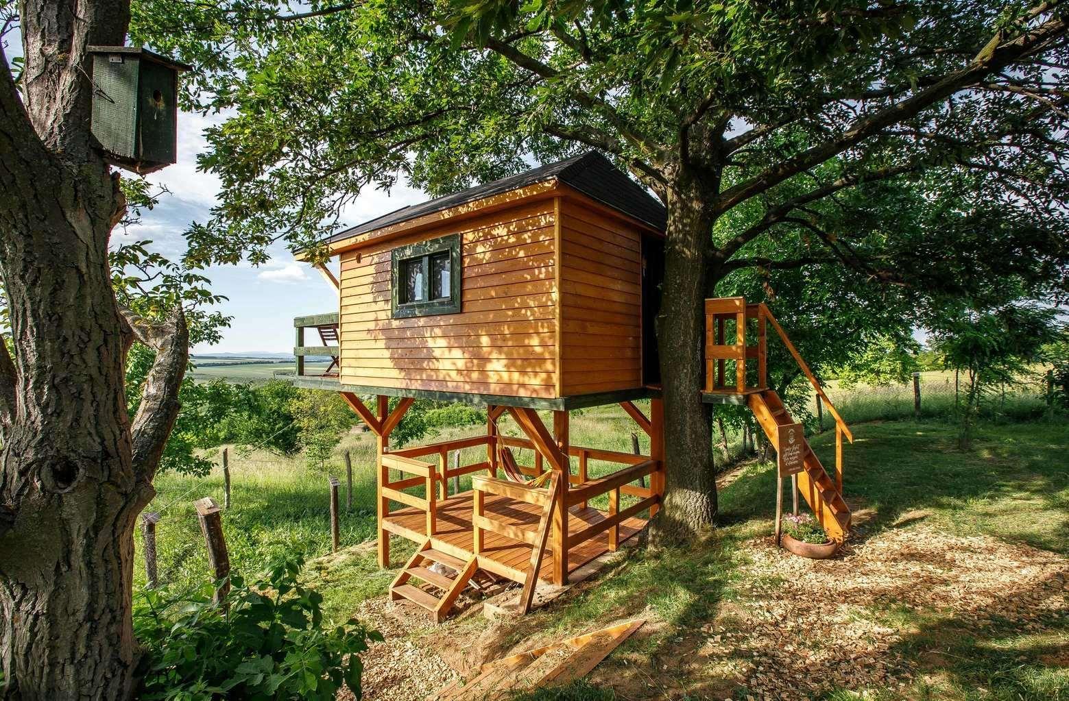 Zöld Fészek Green Nest Lombház Canopy House