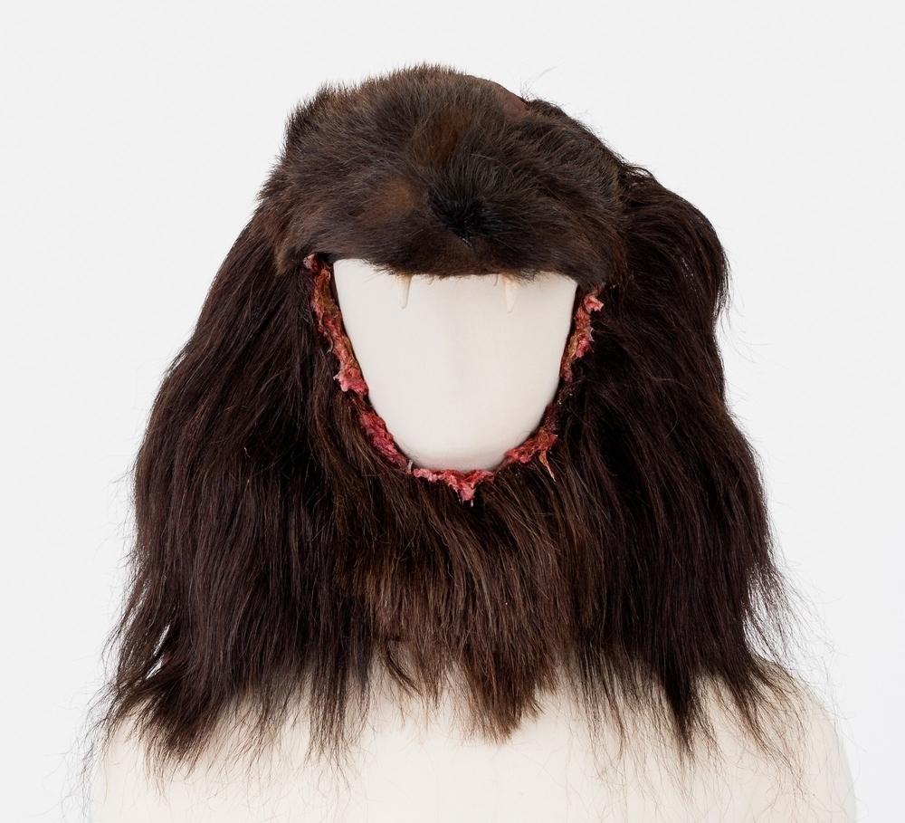 bear headdress medve fejfedő