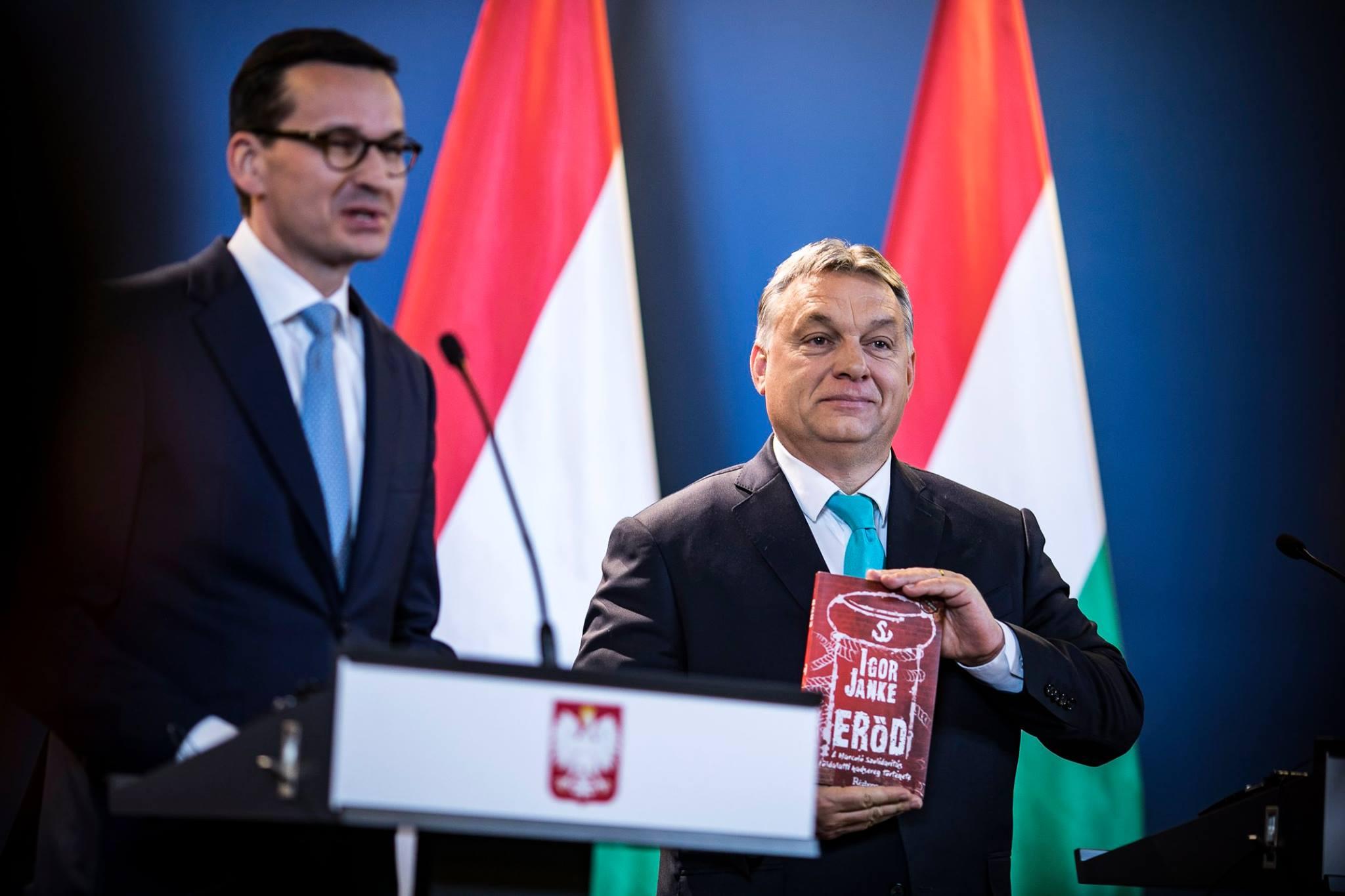 Pologne Hongrie démocratie