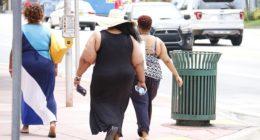 obesity health fat