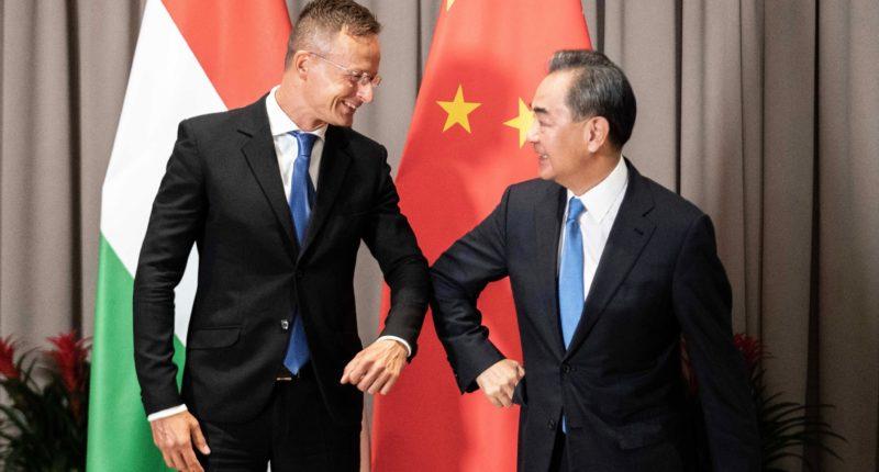Hungary China cooperation money