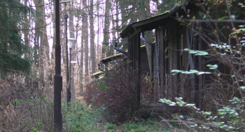 abandoned-summer-camp