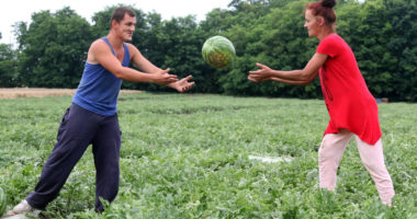 hungary-water-melon-workers