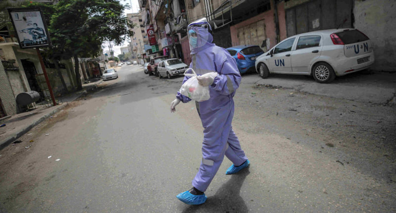 coronavirus in palestine