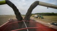 farm-land-hungary-agriculture