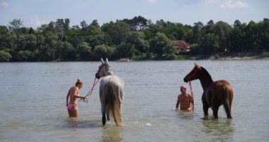 national gallop hungary danube swim