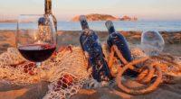 elixsea_underwater_winery_hungarian