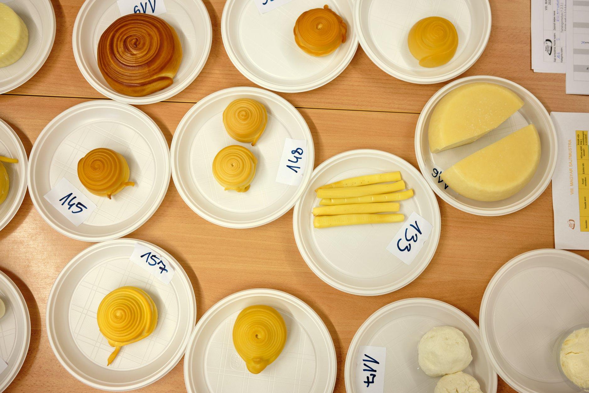 sajtmustra-cheese-festival-hungary-5