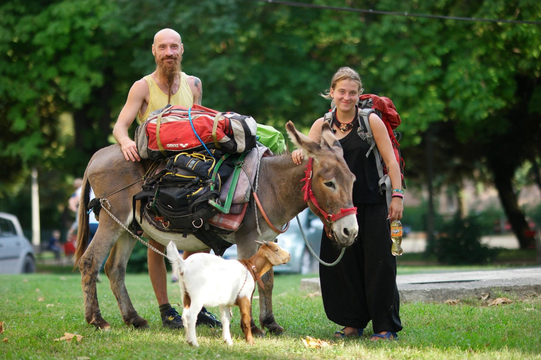 Pilgrim and donkey
