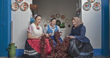 Hagyomány Kalocsa Paprika Tradition Folklore Népi