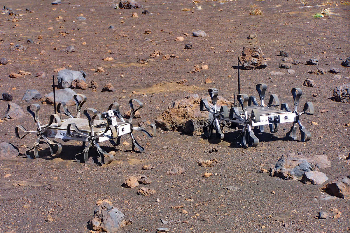 Puli Space Technologies Rovers