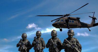 Hungary military Romania Ukraine