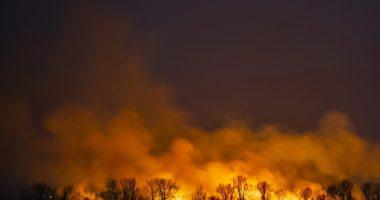 Fire Tűz Nádas Reed