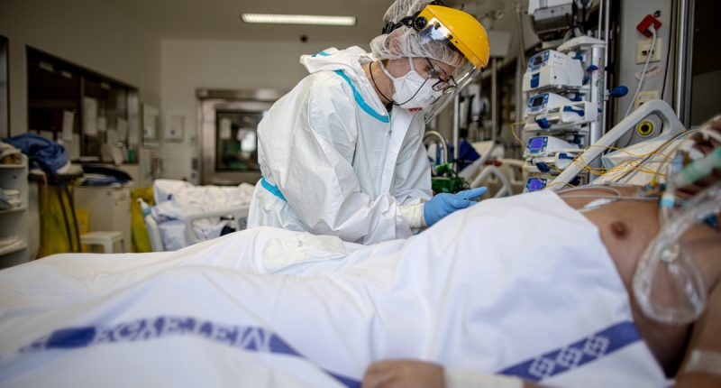 semmelweis covid coronavirus