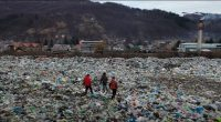 Tisza River Pollution Environment Waste