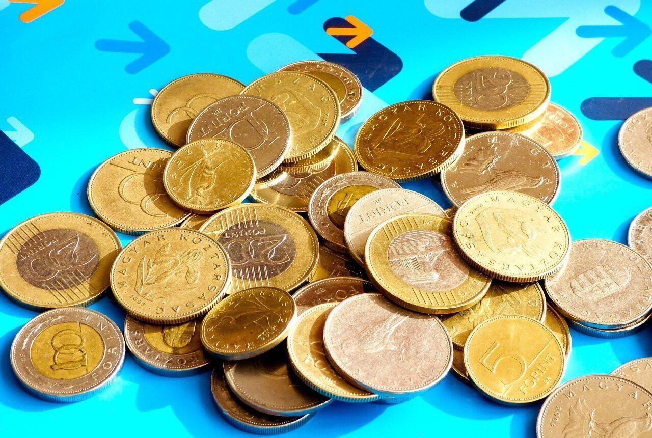 forint money