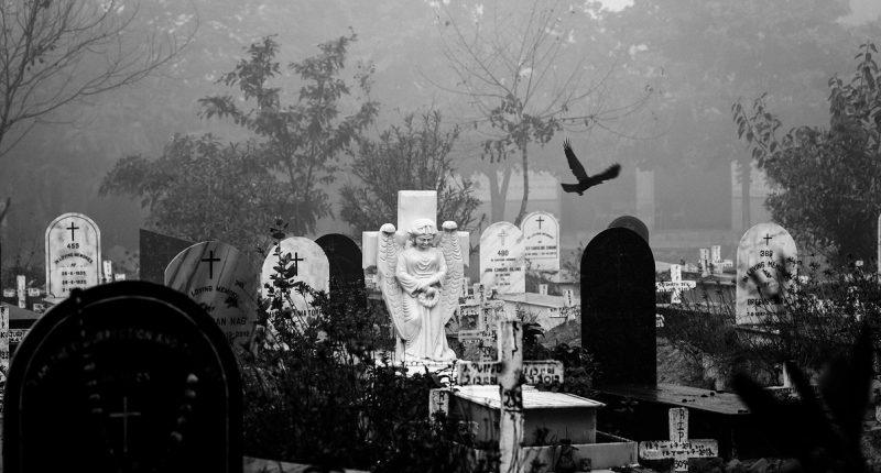 Ukraine covid death toll