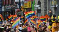 pride-gay-parade-rainbow