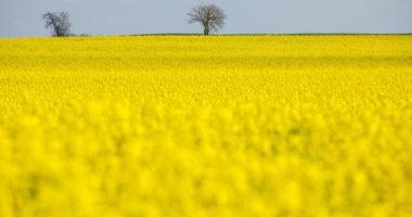 Hungary EU agriculture