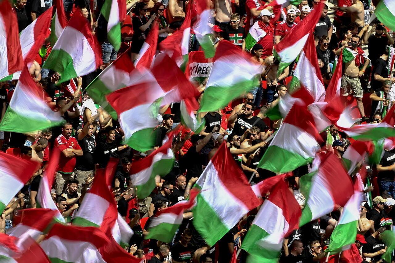 Hungarian Fans Vs France 2