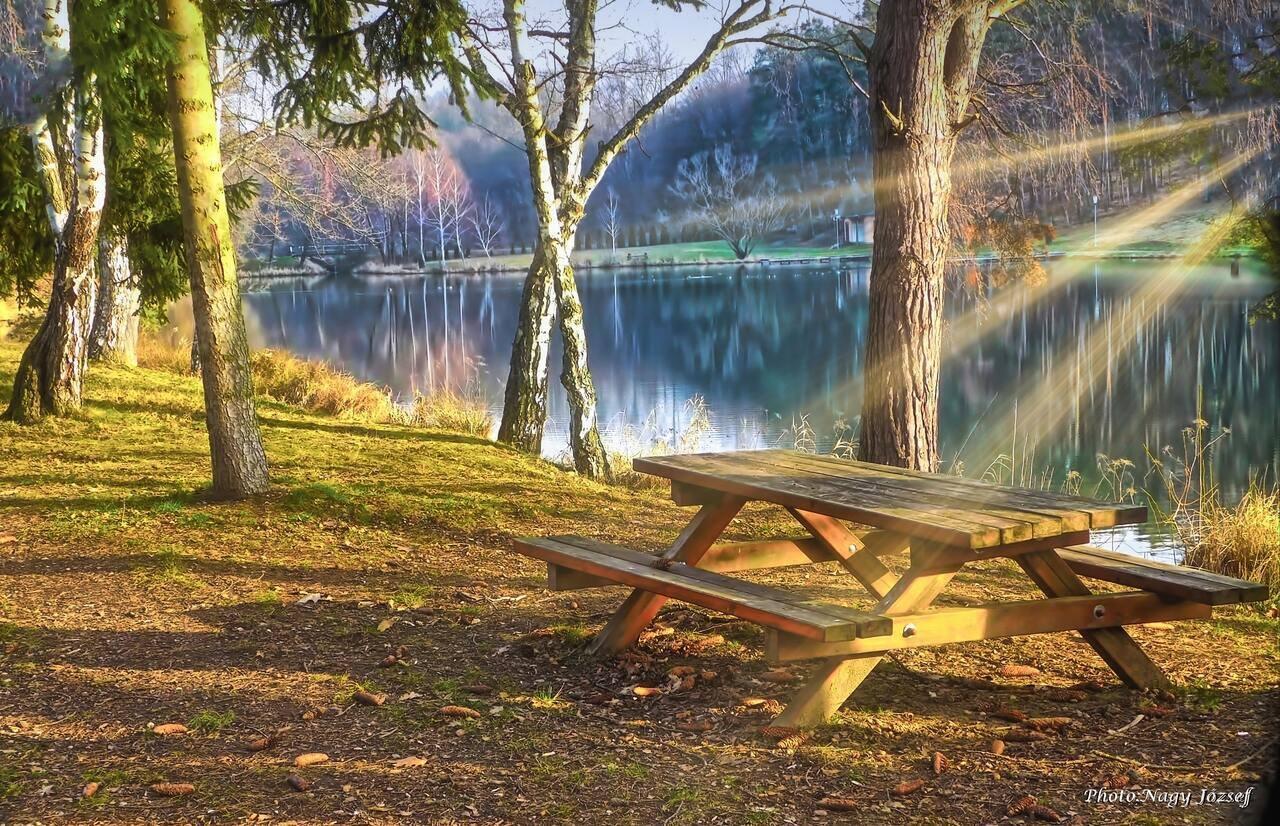Vadása Lake Water Tó 2