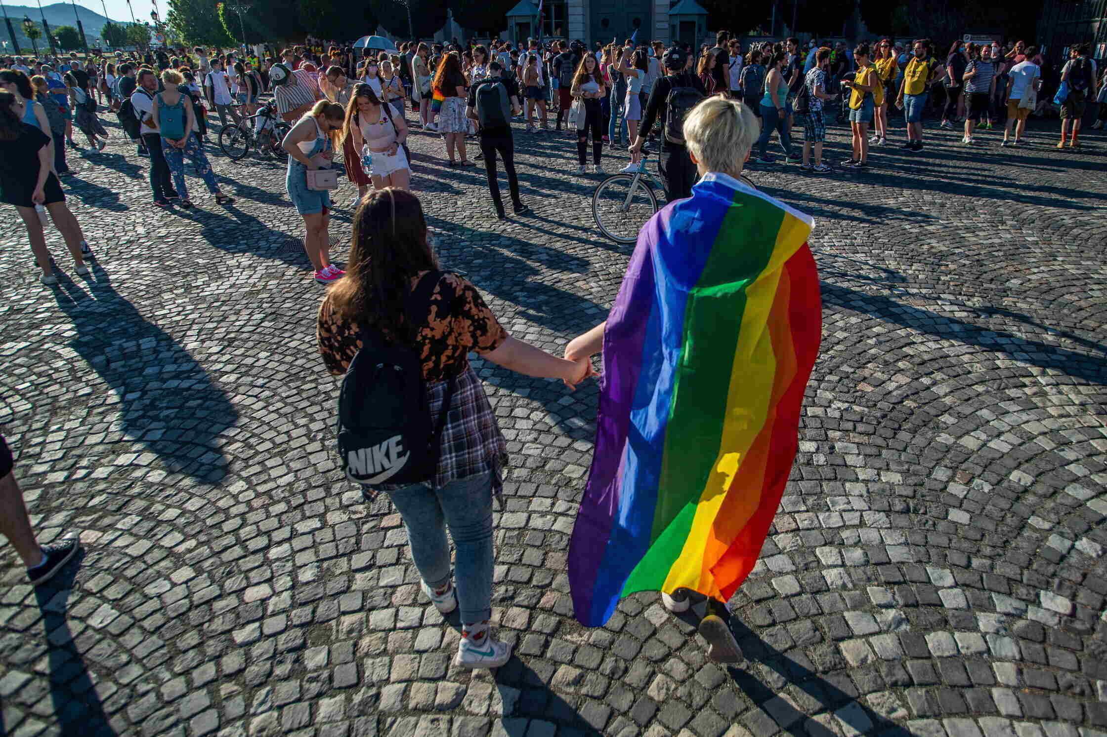 demonstration against homophobic law