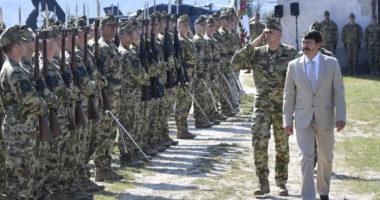 Hungary military army