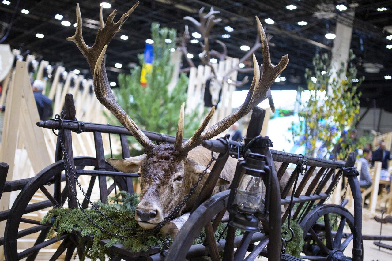 Budapest World Hunting Expo 1