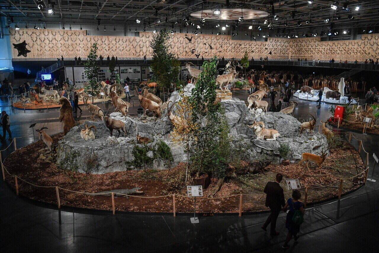 Budapest World Hunting Expo 25