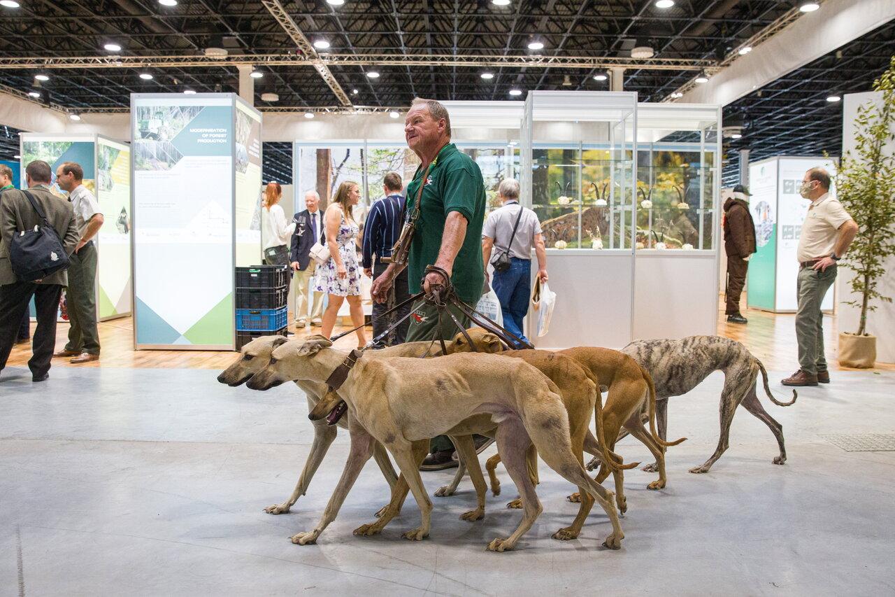 Budapest World Hunting Expo Day Two 1