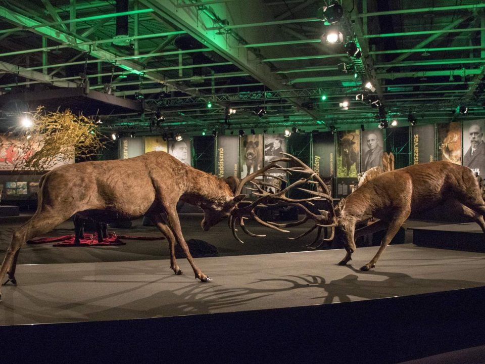 One With Nature World of Hunting and Nature Exhibition in Hungary