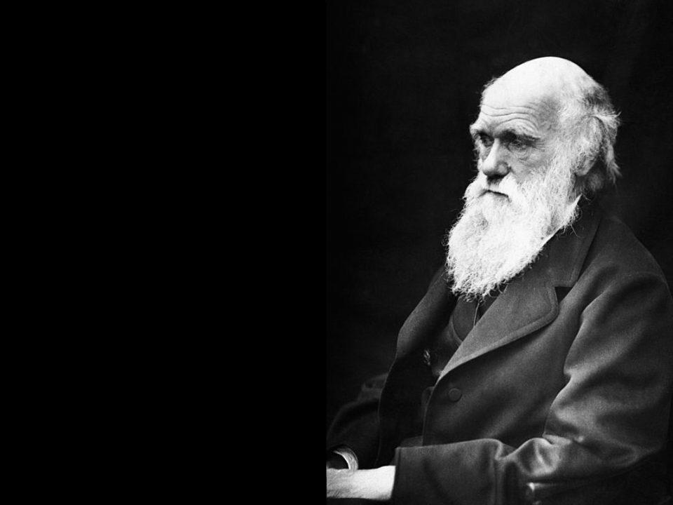 Charles Darwin-biology-science
