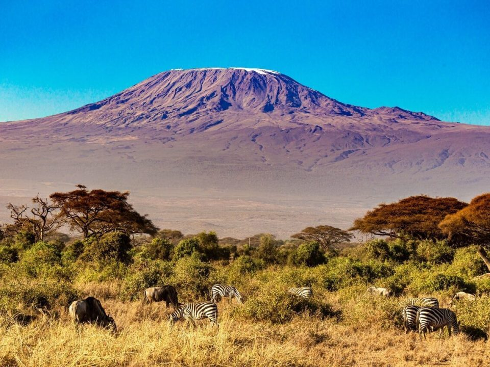 Kilimanjaro Mountain Hike